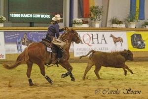 20151010-Q15-VRH-Ranch-Cow-Work-1