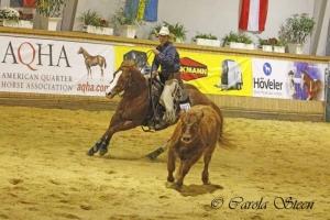 20151010-Q15-VRH-Ranch-Cow-Work-2