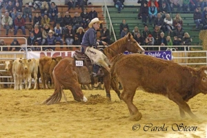 20151011-Q15-VRH-Ranch-Cutting-2