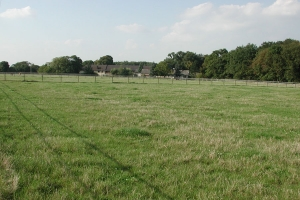 Weide vor den Häusern