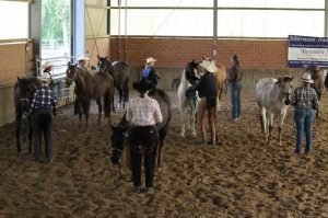 20180603_Ranch_Conformation_IMG_2110