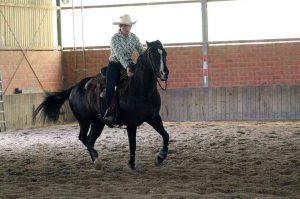 Ranch Reining: Clara Breuer und Kings Little Bueno